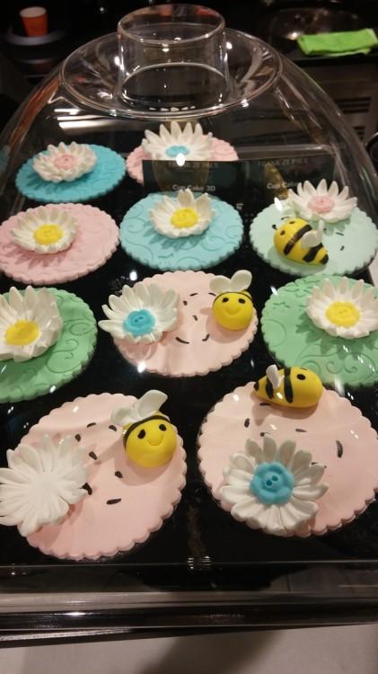Cupcakes για την Ελμίνα!