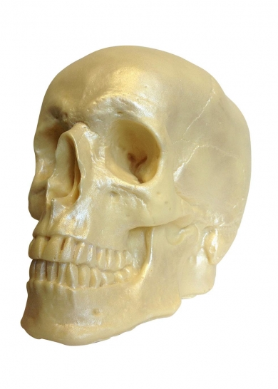 This anatomically correct, white chocolate skull makes a stylish and delicious Halloween party centrepiece