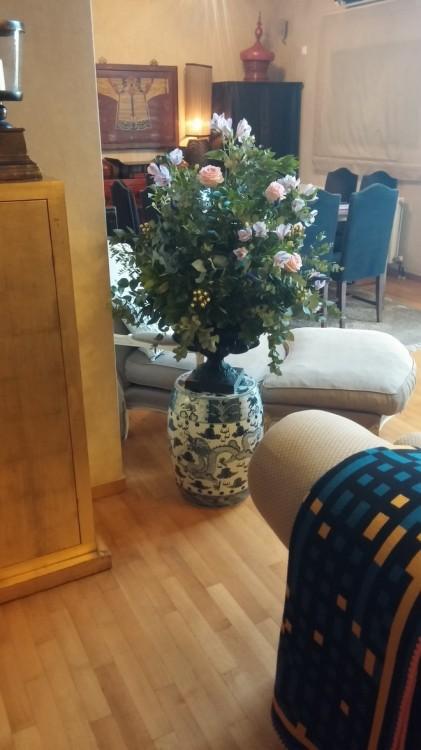 Τα English Roses της Antoinetta Koutsouradi πρωταγωνιστούν στον χώρο χαρίζοντας μία ανεπιτήδευτη πολυτέλεια...