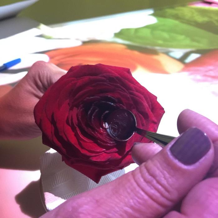 Σερβιρισμένο μέσα σε ένα ολόφρεσκο και ολόδροσο τριαντάφυλλο...