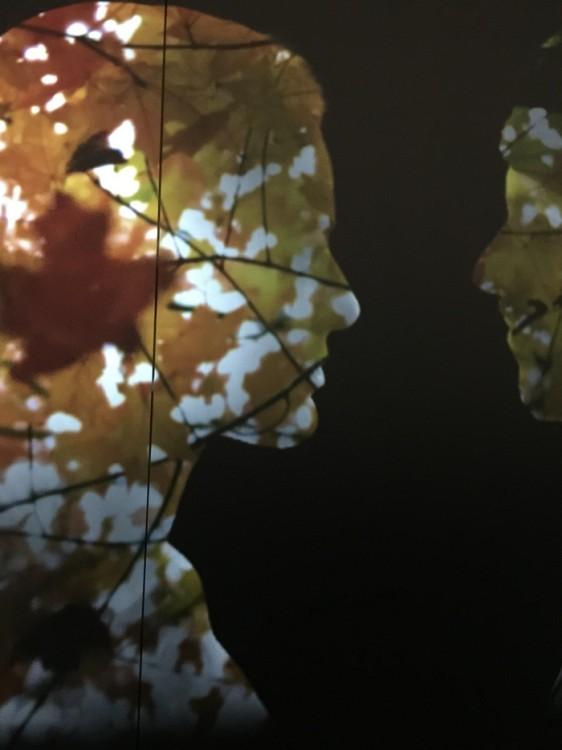 Το All Senses Gastronomy γεμίζει φθινοπωρινά φύλλα...