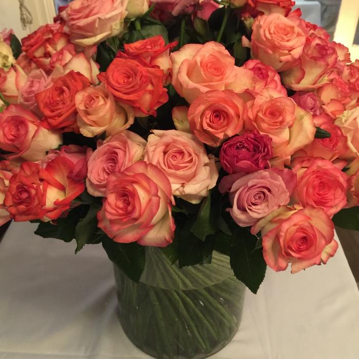H Aργυρώ μας υποδέχεται με ένα φιλί και μπουκέτα από ολόφρεσκα τριαντάφυλλα στα βάζα...