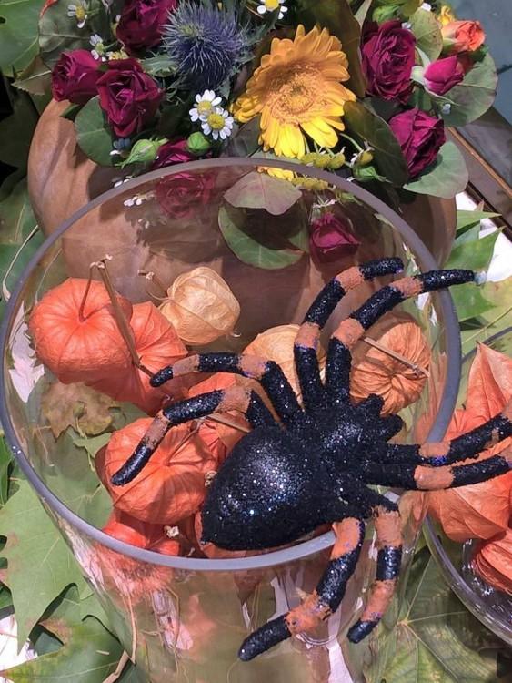 Μαγεύομαι με τις ιδέες της, με το παιχνίδι που κάνει με τα λουλούδια, τα φυτά και τις κολοκύθες! Φτιάχνει ολόκληρα σκηνικά με bubbles και αράχνες και τα τοποθετεί ευλαβικά μέσα σε μεγάλες γυάλες! Τις οποίες θέλω για το τραπέζι του σαλονιού μου...