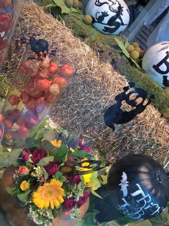 """Θέλω να φτιάξω συνθέσεις να τις στείλω στις φίλες μου με note """"When black cats prowl & pumpkins gleam, may luck be yours on Halloween!!!"""""""