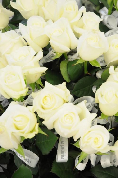 Λευκά τριαντάφυλλα προσφέρονταν σε όλες τις κυρίες
