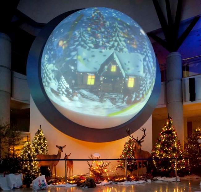 Σας περιμένουμε στις 20 Δεκεμβρίου The Pop Up Project3: Twinkle!, στο Μουσείο Φυσικής Ιστορίας Γουλανδρή!
