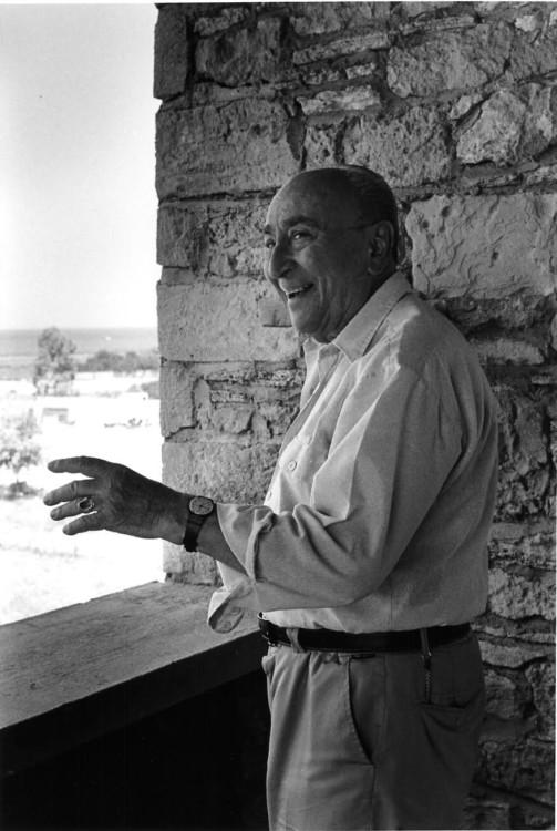 Γιάννης Μόραλης, Αίγινα.