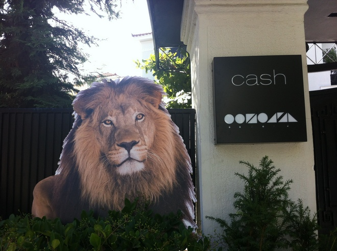 """Το Cash με ένδειξη """"Zoo"""" για το πάρτι..."""