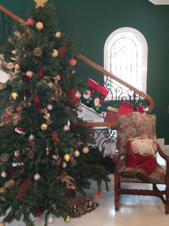 Το υπέροχο Χριστουγεννιάτικο σκηνικό της οικοδέσποινας!
