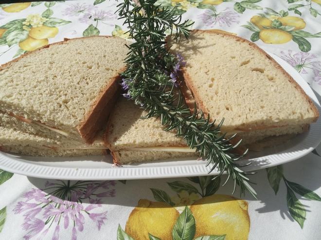 sanwich best