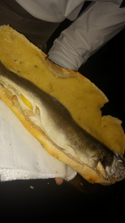 Fish of the day baked in salt crust dough...