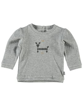 Baby Boy Organic Cotton ''Bite Me' Sweat Top