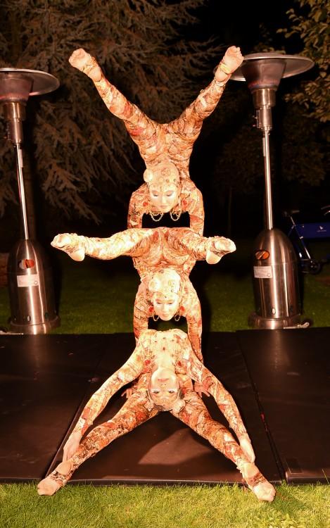 Cirque du Soleil performance...