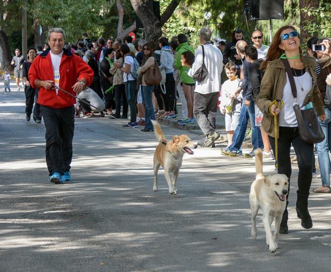 Η Άννα Κούμπα - εντεταλμένη σύμβουλος με αρμοδιότητα στους πολιτικούς γάμους συμμετείχε μαζί με το σύζυγό της Γιώργο και τα σκυλιά τους στον Αγώνα της Οικογένειας 400 μέτρων