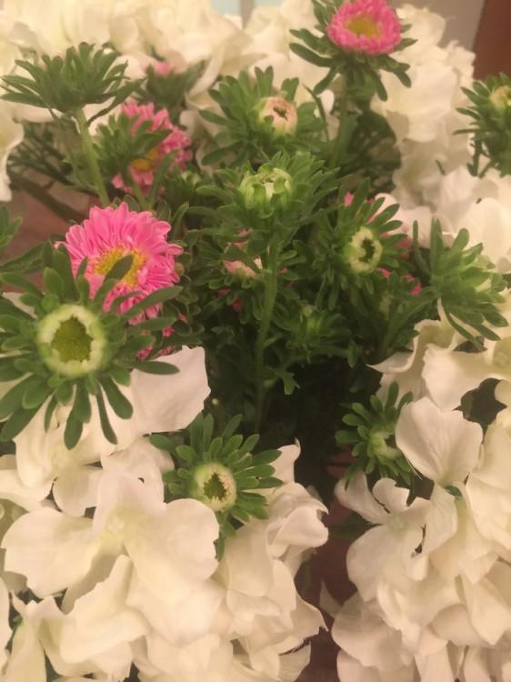 Λουλούδια παντού...