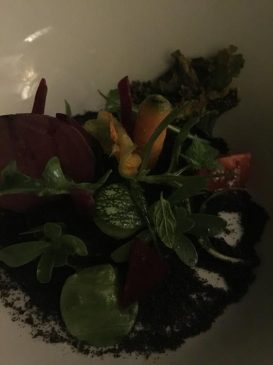 Σαλάτα μεε φρέσκα λαχανικά απο το βιολογικό μποστάνι σε διάφορες υφές...