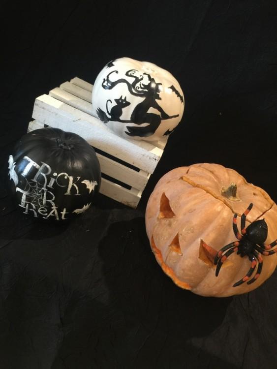 Η Αντουανέτα μου παρουσιάζει μία μία τις Κολοκύθες που έχει φτιάξει για το ανθοπωλείο της, τις αμέτρητες συνθέσεις και όλα όσα εμπνεύστηκε για το φετινό Halloween...