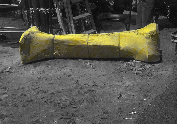 Excavated bone of Nandi