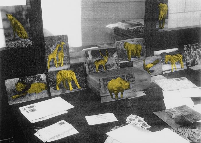 Jungle Resort on my Desk
