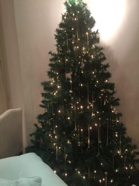 Το Χριστουγεννιάτικο Δέντρο...